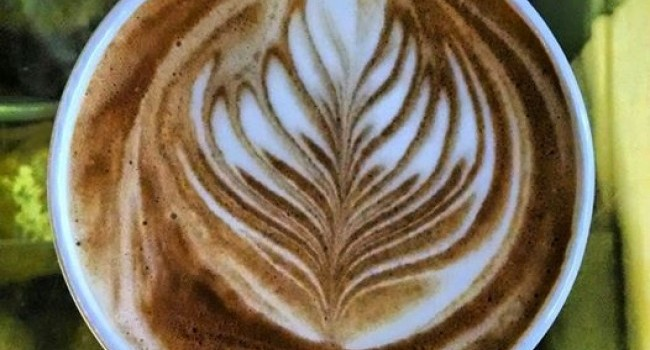 In Search of Liquid Sunshine? Top 12 Southeast Seattle Coffee Shops